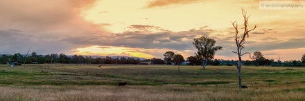 Farmland Panorama, Upper Caboolture, QLD