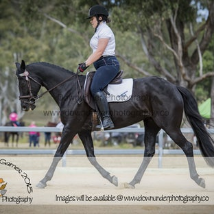 LVRC Masters Dressage Gallery 1 2018 - Congratulations to all the Master's Riders - images will be uploaded into a number of files you can put them to...