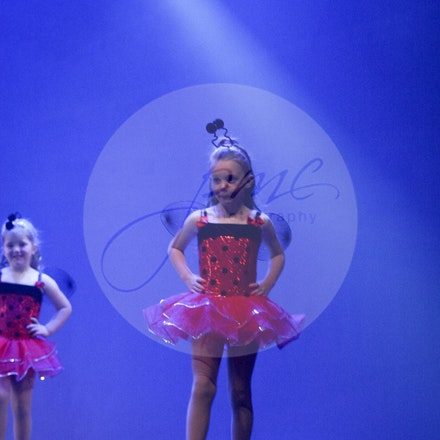 ugly bug ball - House Of Dance Disco ... beyond the mirror ball!