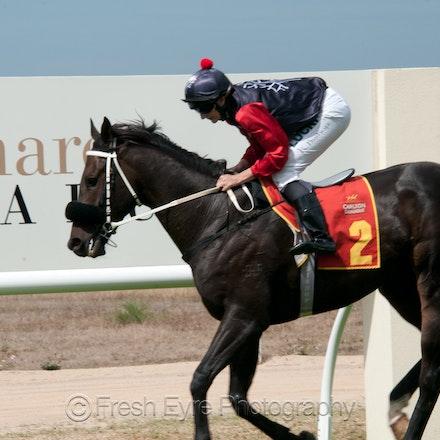 15KR029_Kimba Races
