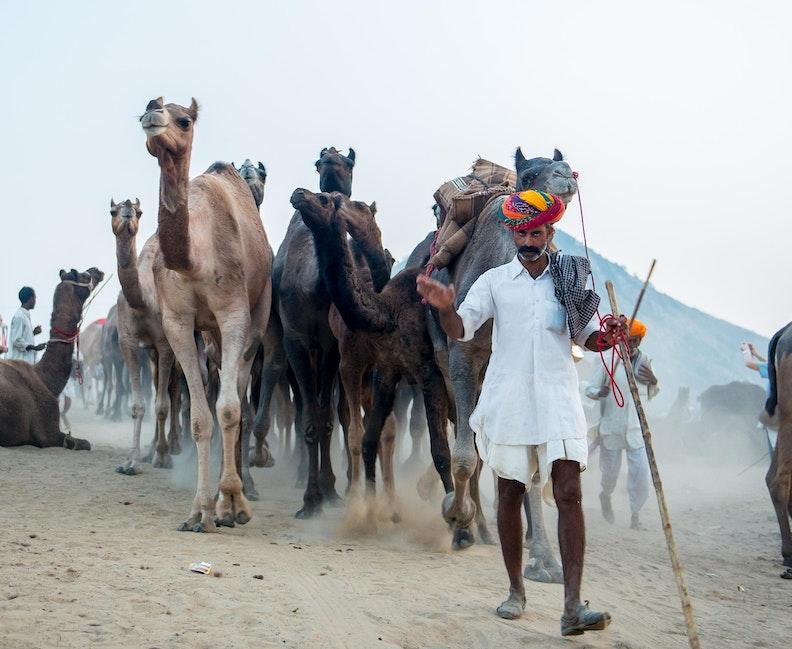 India Portfolio (14 of 16)