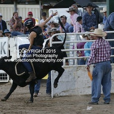 Warwick 2015 - Ladies Steer Ride - Sect 1
