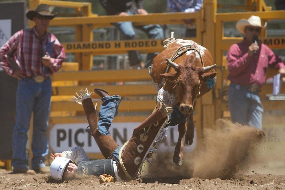 Picton Rodeo 050113-44