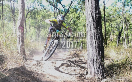 enduro practice-15 - Aiden Coghlan rips between the trees on 1995.
