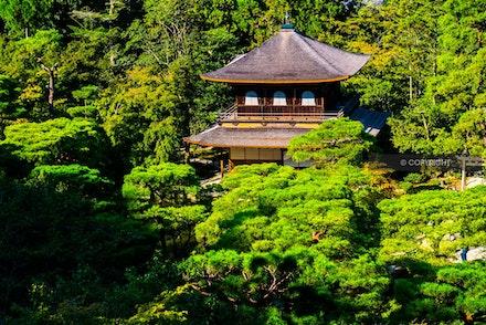 11 - Kyoto, Japan