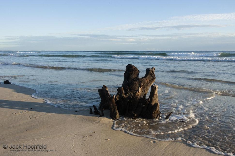 Tree stump in the incoming tide, Belongil beach - Tree stump in the incoming tide, Belongil beach, Byron Bay