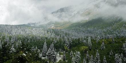 Alpine - Sundance, Utah. 2013.