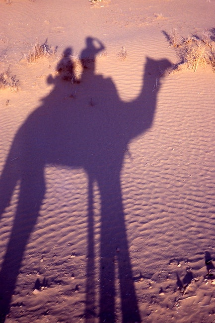 Camel Shadow, Thar Desert, Rajasthan, India