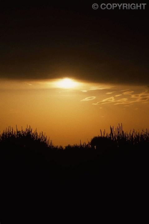 top thar desert sunset - photo #36