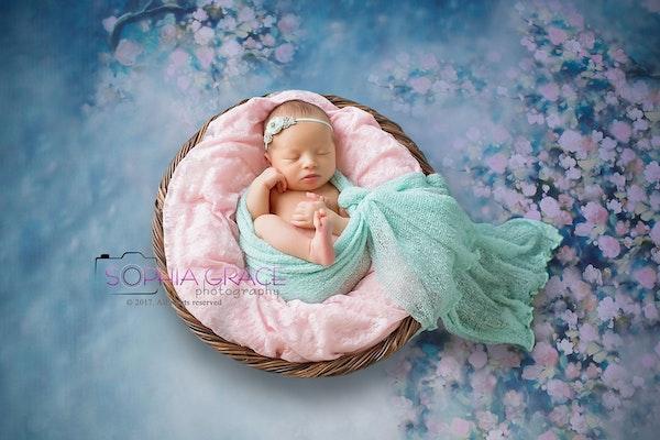 Chula vista newborn madeline composite copy newborn baby portrait san diego newborn chula