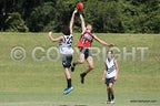 AFL U18's 12-4-2014 - Paul Sheldon Memorial Day Under 18's  12-4-2014