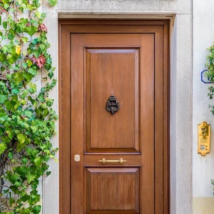 083 Padua 011115-2866 - Classic elegant door in Padua.