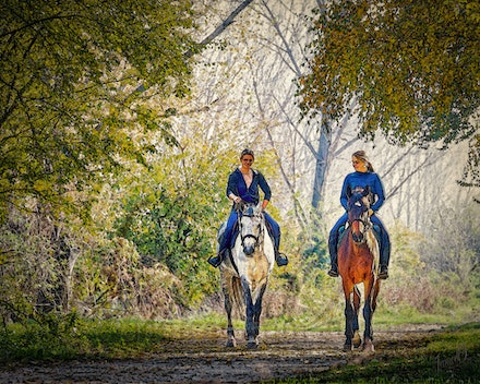 Afternoon Delight - Girls on a horse ride.