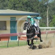 Gympie 26 09 15 - Photos taken by Three Way Photos