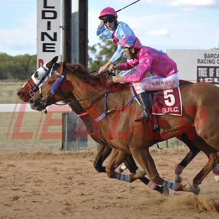 160430_SR25475 - at the Tree of Knowledge Cup Race day in Barcaldine, Saturday April 30, 2016.  sr/Photo by Sam Rutherford