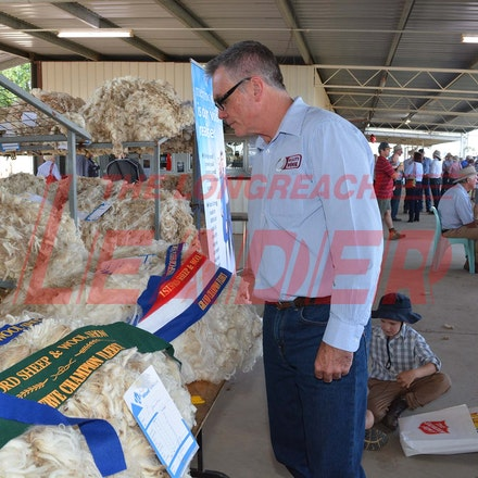 170526_DSC_0844 - Action at the 2017 Isisford Sheep and Wool Show