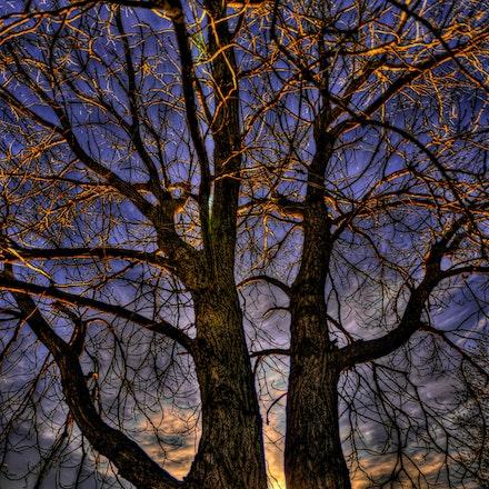 Siblings  1.10.2015.2 - Siblings. A peek of sunset is visible between these two siblings at Branched Oak Lake in Lancaster County, NE. #nebraska #lancastercounty...